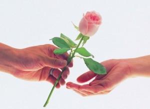 zaufanie-dziękujemy-podziel-się-z bliskimi-jakość-najtaniej
