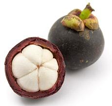 mangostan-antyoksydanty-zenthonic